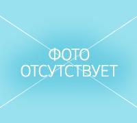 Гойтиева Наида Алидибировна